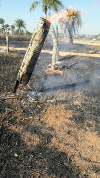 Sofocan 5 incendios de pastizales de Caaguazú