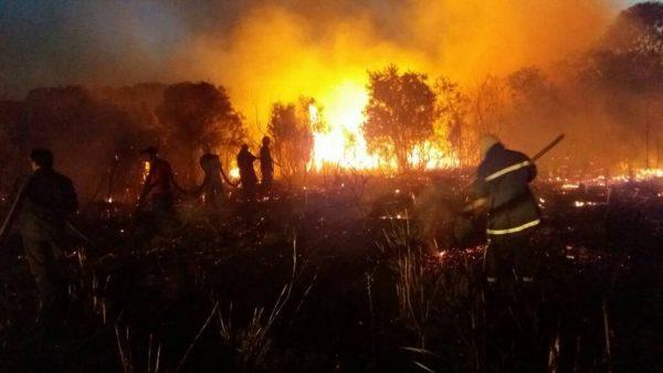 [URGENTE] Bomberos de Caaguazú trabajan para controlar incendio forestal en Yhu